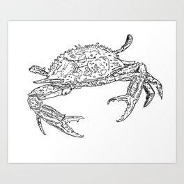 Crab - Pen and ink drawing Art Print