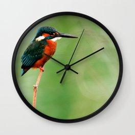 KING FISHER Wall Clock