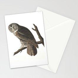 Great Cinereous Owl - Illustration by J.J. Audubon Stationery Cards