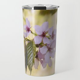 Flowers. New Spring Sargent's Cherry tree leaves and blossom (Prunus sargentii). Norfolk, UK Travel Mug