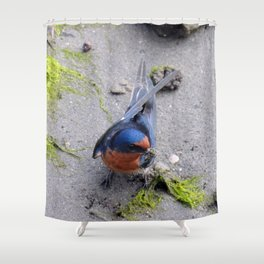 Home Building Shower Curtain