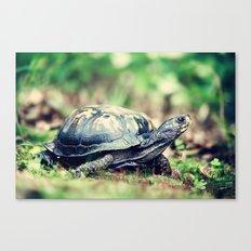 Slowpoke Canvas Print