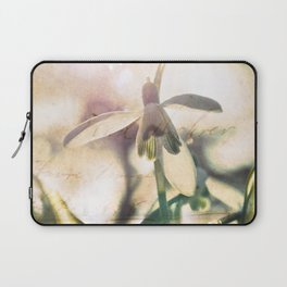 Snowdrops stretching towards the warm spring sun. Laptop Sleeve