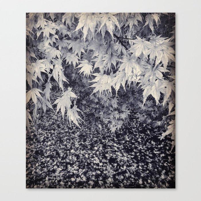 Infinity Maple Leaves, Fall, Autumn Trees Leinwanddruck