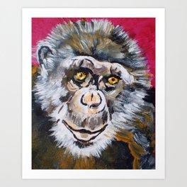Toby, the Chimpanzee (1978-) Art Print
