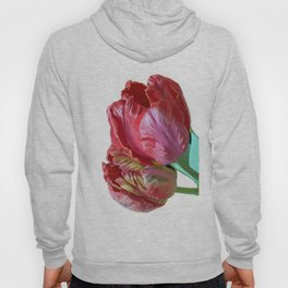 Two Red Tulips Vector Isolated Hoody
