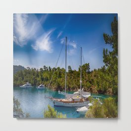 sea art Metal Print