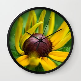 Yellow Coneflower/Rudbeckia Wall Clock