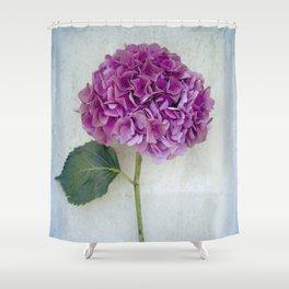 One Hydrangea II Shower Curtain