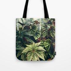 Beautiful Begonias Tote Bag