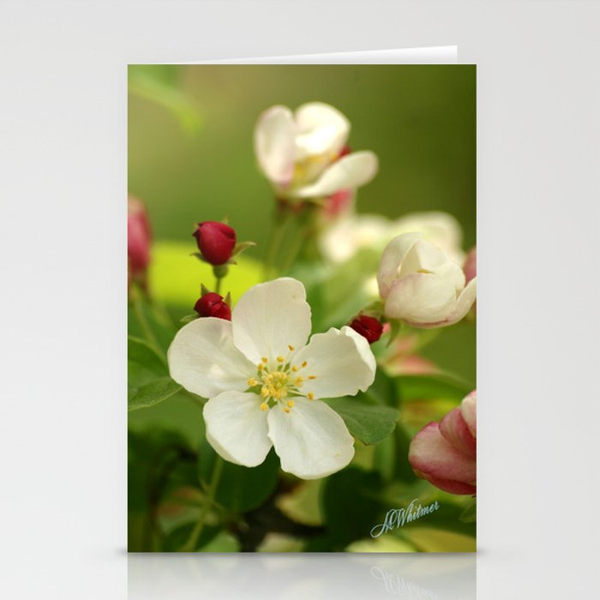 Budding trees Stationery Cards
