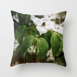 Single Dogwood Flower Throw Pillow