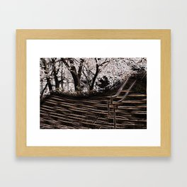 City Tree Framed Art Print