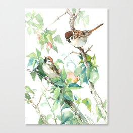 Sparrows And Apple Blossom Canvas Print