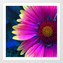 Favorite Flower Art Print
