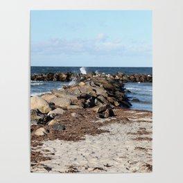 Breakwater at the Baltic beach - Wellenbrecher am Ostseestrand Poster