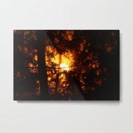 Sunrise Through the Woods Metal Print
