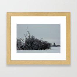 2013 Ice Storm 2 Framed Art Print