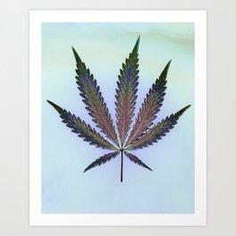Hemp Lumen #7  Marijuana, Cannabis Art Print