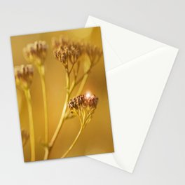 Autumn wildflowers in forest #decor #buyart #society6 Stationery Cards