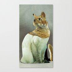 KatzenJammer 7 Canvas Print