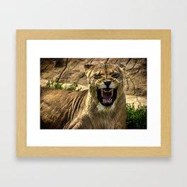 Predator Framed Art Print