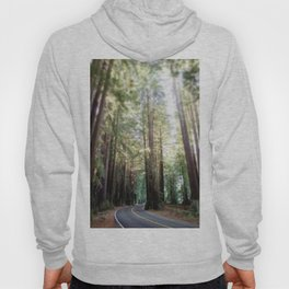 Redwood Trees and the Highway Hoody