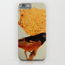 Vintage Print - Birds and Nature (1905) - Orchard Oriole iPhone Case