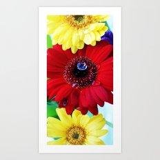 Red and Yellow Gerberas Art Print