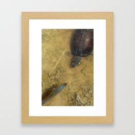 Aquatic Friends Framed Art Print