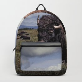 American Buffalo or Bison in the Grand Teton National Park Backpack