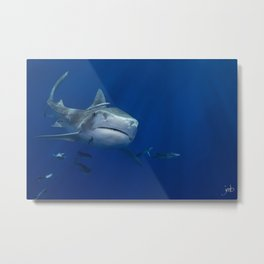 Tiger Shark 1 Metal Print