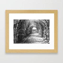 Garden Tunnel Framed Art Print