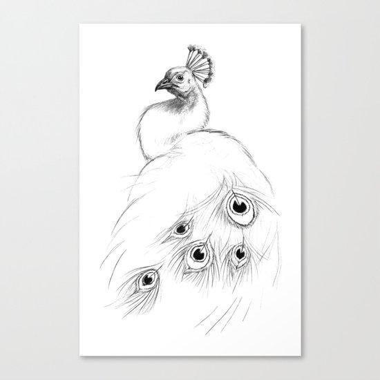 Peacock  SK097 Canvas Print