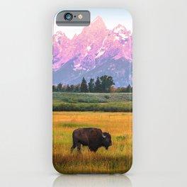 Grand Tetons Bison iPhone Case