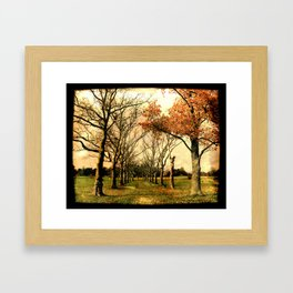 Chester County, PA: A path in the park Framed Art Print