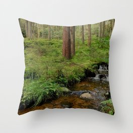skog och bäck Throw Pillow