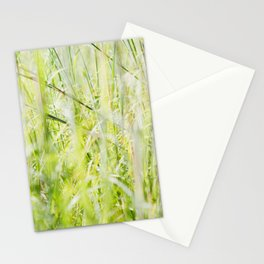 Under Our Feet Stationery Cards