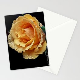Heartful Rose Stationery Cards