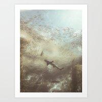 Shark Dream Art Print