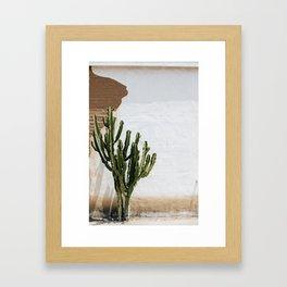 California Cactus Framed Art Print