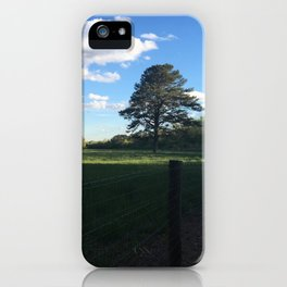walk in the park iPhone Case