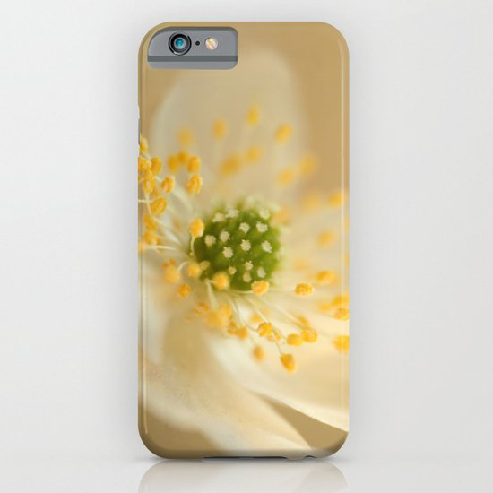 Blossom In Creme iPhone & iPod Case