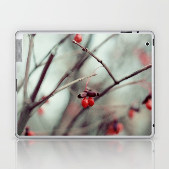 December Dream Laptop & iPad Skin