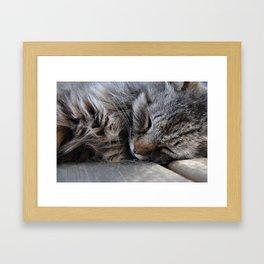 Dozy Framed Art Print
