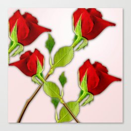 Red Rose For My Valentine Day Canvas Print