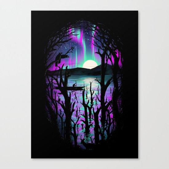 Night With Aurora Canvas Print