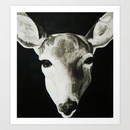 Nature Drawing: Deer Art Print