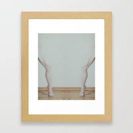 _DSC7325 Framed Art Print