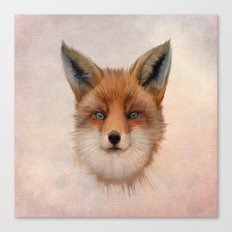 Vulpes vulpes - Red Fox Canvas Print